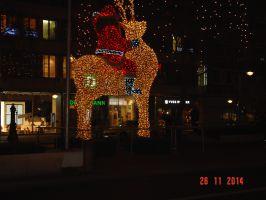 Informationsfahrt_nach_Berlin_Bild09